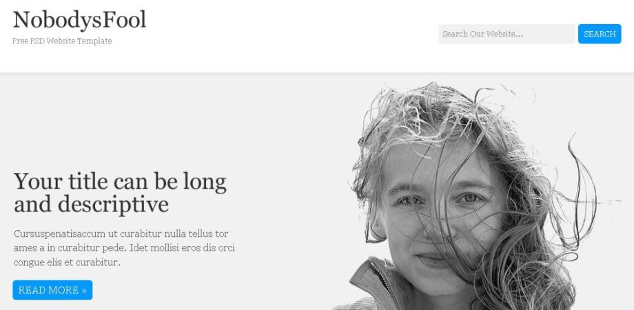 NobodysFool PSD Website Free Template