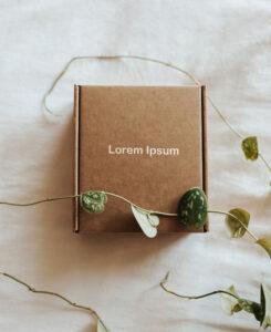 Small Cardboard Box Free Mockup