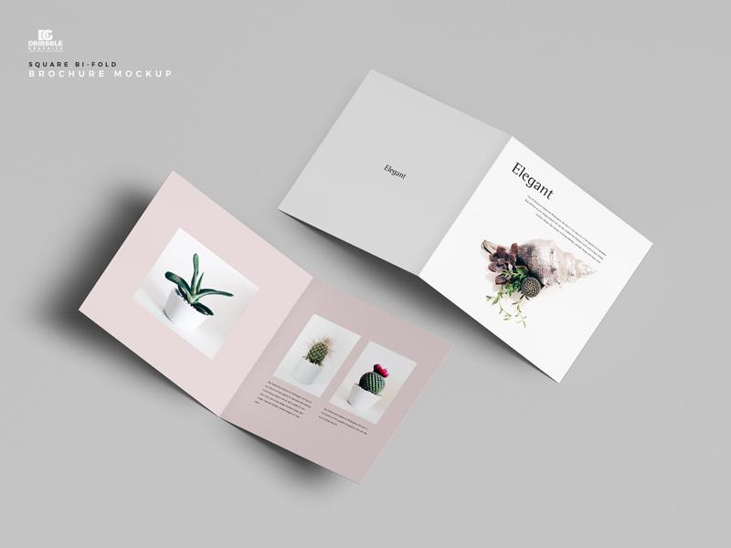 Square Bi-Fold Brochure Free Mockup