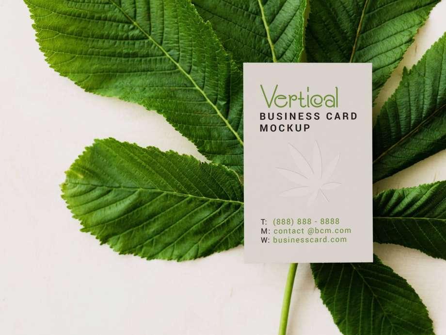 Free Horizontal & Vertical Business Card Mockup