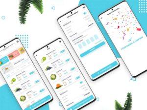 Free Online Grocery Shopping App UI Kit