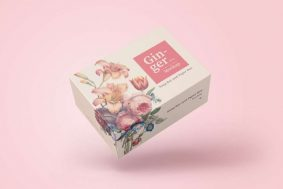 Free Soap Bar and Paper Box Mockup