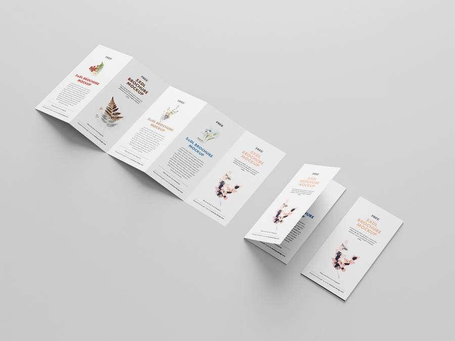 Free 5-Fold Brochure DL Mockup