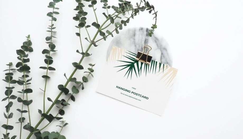Free Postcard Kit Mockup