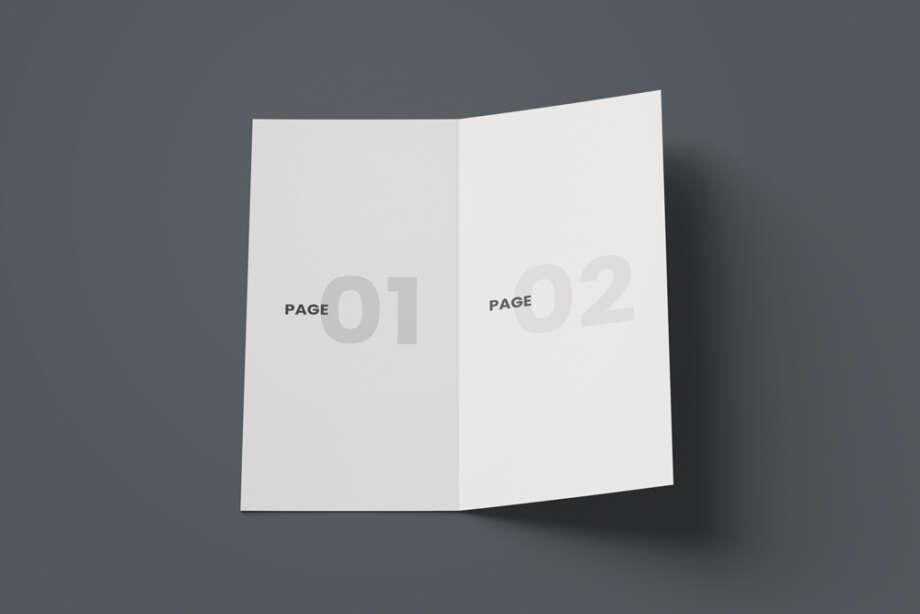 Free Open DL Bi-Fold Brochure Mockup