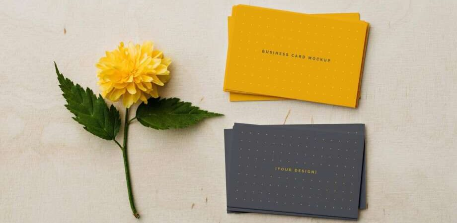 Free Front Back Business Card Mockup PSD