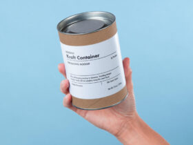 Free Hand Holding Psd Container Kraft Box