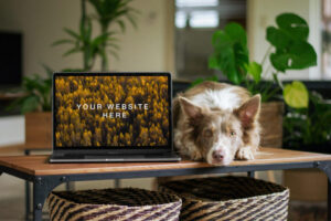 Free MacBook with Dog Mockup