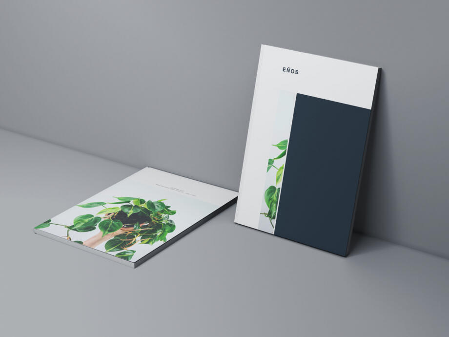 Free Two Magazine Covers Mockup PSD