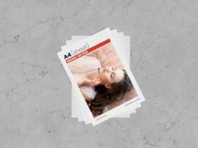 Free A4 Size Flyer Mockup PSD Template